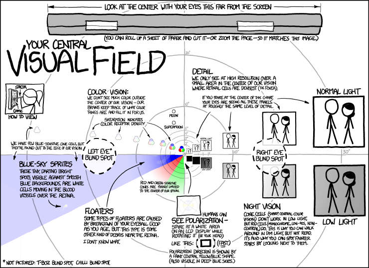 1080: Visual Field - explain xkcd