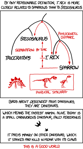 File:birds and dinosaurs.png